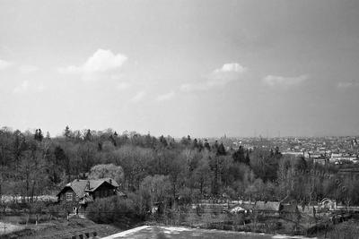 View from the Hill of Glory on Lychakivskyi cemetery and the city