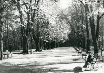 Vysokyi Zamok Park