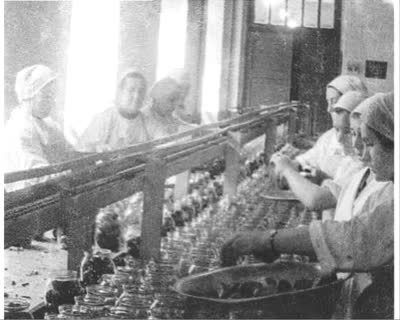 Canning Factory in Novovolynsk