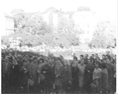 Unveiling of the Memorial Plaque to M. Zaiachnivskyi