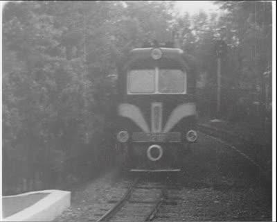 Lviv Children's Railway Turns 14