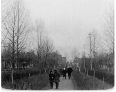 Ivanychivsk Sugar Plant
