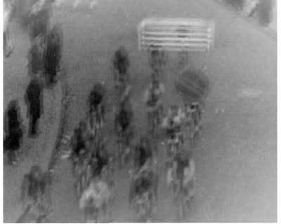 Sports-71: All-Union Cycling Race
