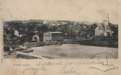 Панорама Підгаєць