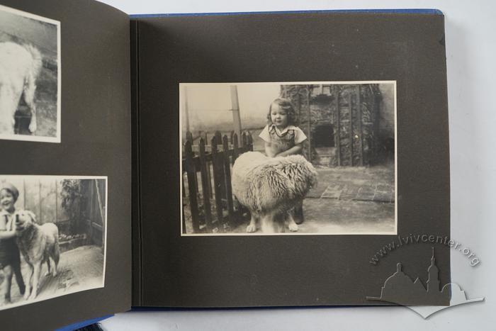 Andriy Otko's Photograph album 22