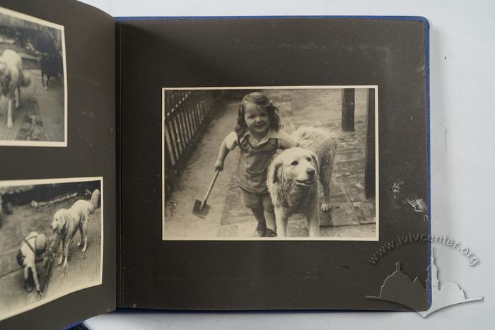 Andriy Otko's Photograph album 24