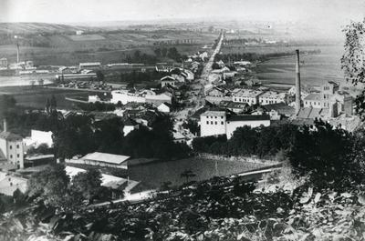 View of Pidzamche from park Vysokyi Zamok. Photo reptoduction