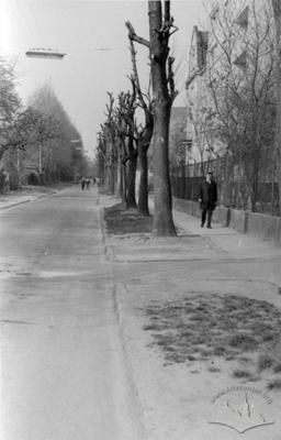 Hipsova Street
