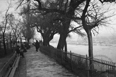 Petrovsky Park