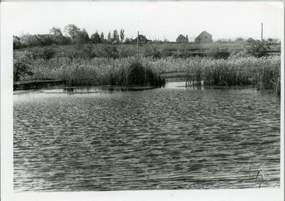 Осінній ставок