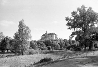 View of Oleskyi castle
